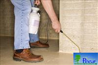 Pest Control Services (Upto 1200 Sq.Ft)